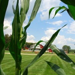 'Field of Dreams' land development uproar